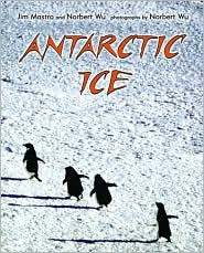 Antarctic_Ice book cover image