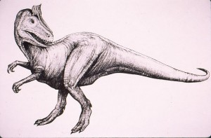 Drawing of Cryolophosaurus ellioti