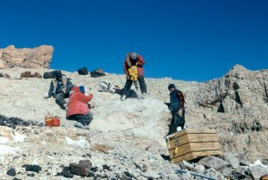 Paleontological Dig on Mt. Kirkpatrick