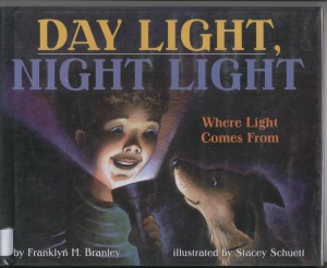 day_light book cover image