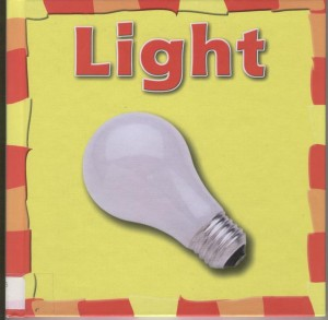 Light book cover image