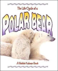 _polar_bear book cover imagea